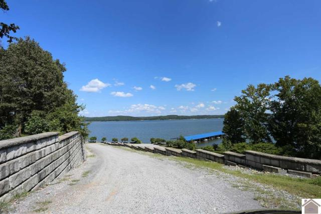 Lot #12 Waterfowl Road, Murray, KY 42071 (MLS #99445) :: The Vince Carter Team