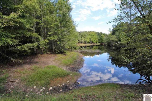 00 Hidden Lake Rd, Hardin, KY 42025 (MLS #99468) :: The Vince Carter Team