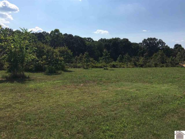Lot 49 Western Shores, Murray, KY 42071 (MLS #99530) :: The Vince Carter Team