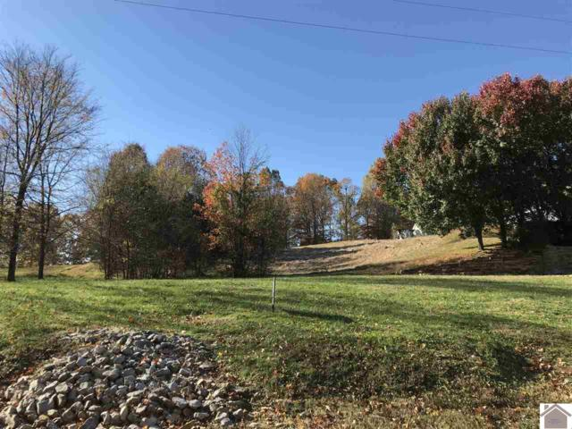 Lot 4 Mint Springs Drive, Kuttawa, KY 42055 (MLS #100049) :: The Vince Carter Team