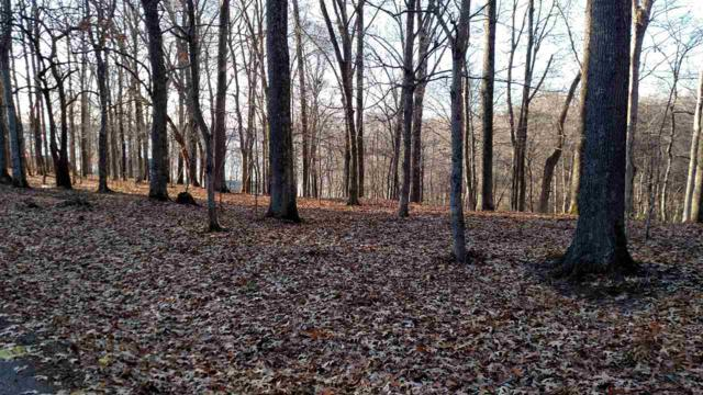 lot 66 Rolling Mill Road, Eddyville, KY 42038 (MLS #100259) :: The Vince Carter Team