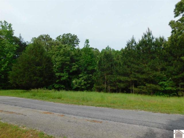 Lot 45 Bayridge Road, New Concord, KY 42076 (MLS #100677) :: The Vince Carter Team