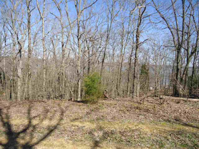 Lot 406/407 Unit 2, Pine Bluff Subd, New Concord, KY 42076 (MLS #93354) :: The Vince Carter Team