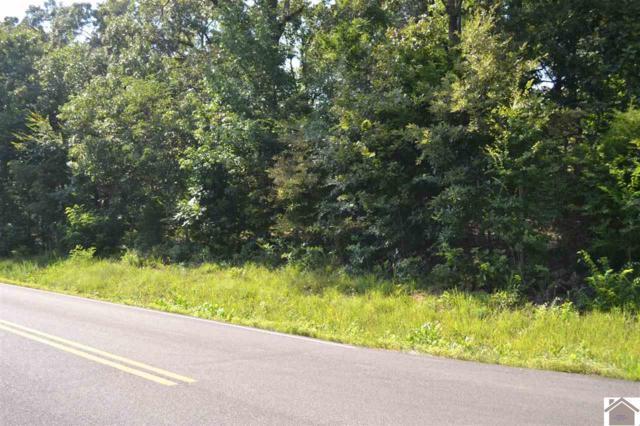 000 Moors Camp Hwy, Gilbertsville, KY 42044 (MLS #98343) :: The Vince Carter Team