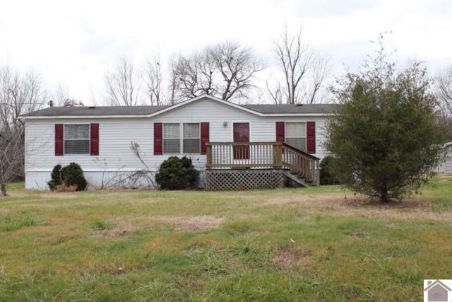 6563 State Route 1241, Hickory, KY 42051 (MLS #100435) :: The Vince Carter Team
