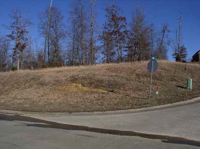 Lot 59 Fairway Drive, Benton, KY 42025 (MLS #90243) :: The Vince Carter Team