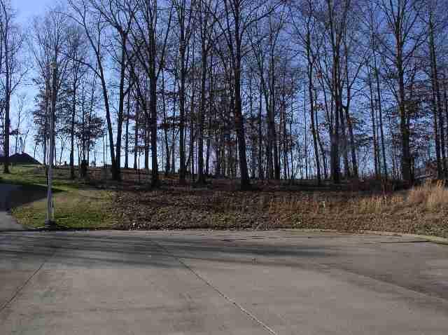 Lot 25 & Half Of 24 Eagle Drive, Benton, KY 42025 (MLS #90263) :: The Vince Carter Team