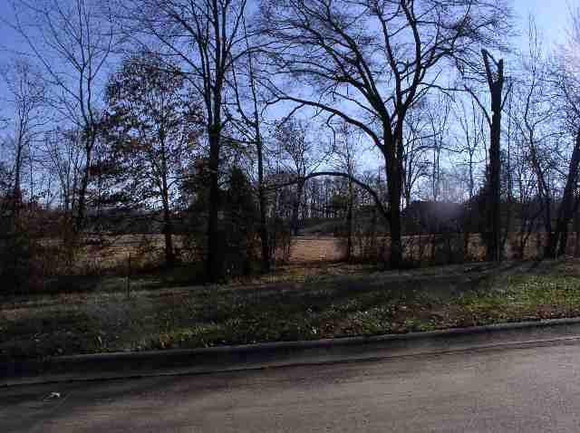 Lot 27 & Half Of 28 Eagle Drive, Benton, KY 42025 (MLS #90269) :: The Vince Carter Team