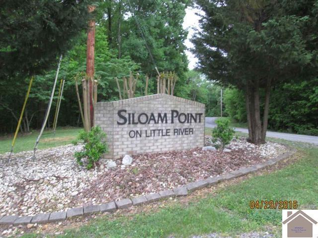 #40 Siloam Point, Cadiz, KY 42211 (MLS #99524) :: The Vince Carter Team