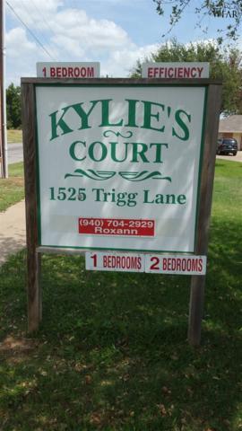 1525 Trigg Lane, Wichita Falls, TX 76306 (MLS #150203) :: WichitaFallsHomeFinder.com