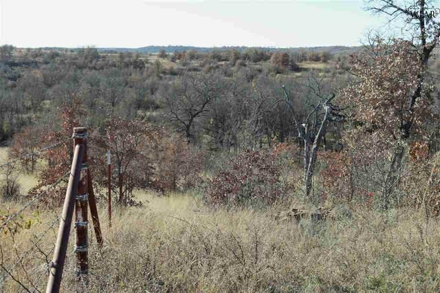 221 ACRES Puddin Valley Rd, Bowie, TX 76230 (MLS #158717) :: WichitaFallsHomeFinder.com