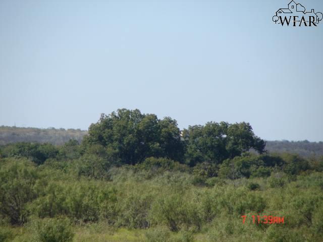 TBD Fm 367, Iowa Park, TX 76367 (MLS #147943) :: WichitaFallsHomeFinder.com