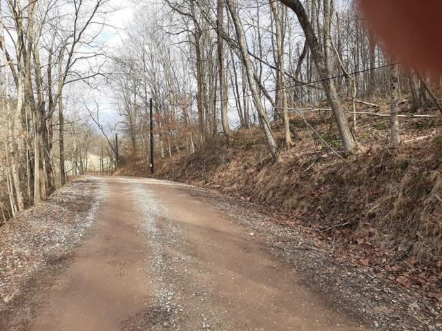 0 Willow Fork, Sistersville, WV 26175 (MLS #130010) :: THA Realty