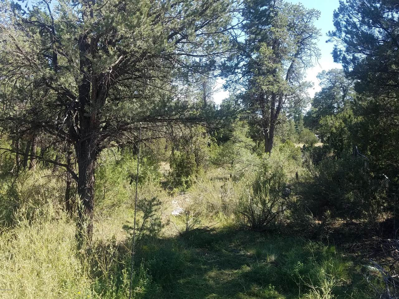 3125 Ranch Road - Photo 1