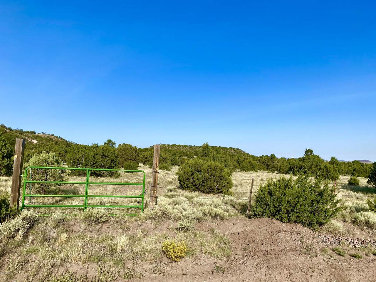 00 23.71 ACRES TBD SPANISH TRL - Photo 1