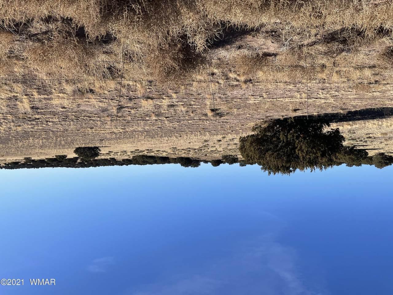 Lot 137 Elk Valley Ranch - Photo 1