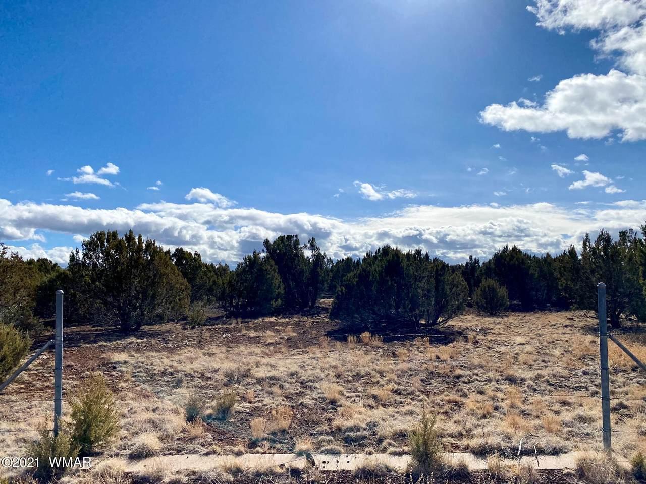 8969 Tomahawk Trail - Photo 1