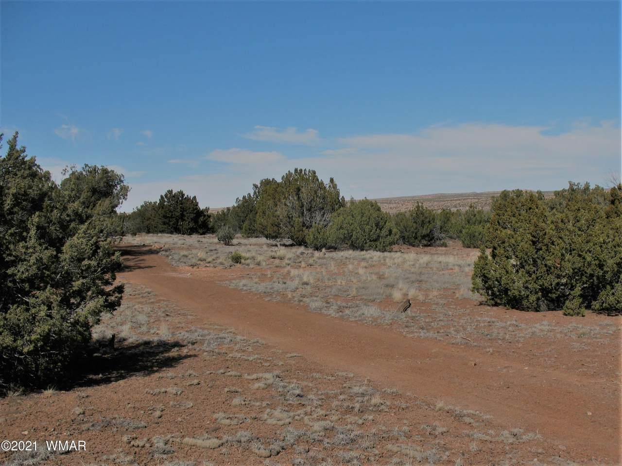 7830 Cedar Trail - Photo 1