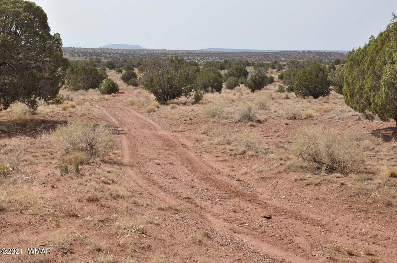 5192 Black Mesa Valley & 5214 Road - Photo 1