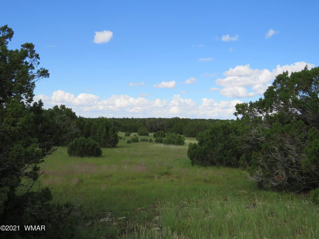 99 County Rd 8127 - Photo 1