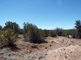 TBD-Lot 002B Bourdon Ranch Road - Photo 3