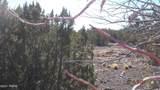 7821 Cedar Trail - Photo 8