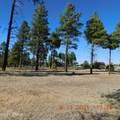 2250 Big Bear Circle - Photo 7