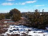 7833 Cedar Trail - Photo 1