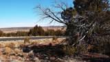 7833 Cedar Trail - Photo 23