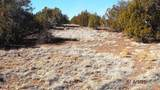 7825 Cedar Trail - Photo 10