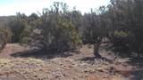 7825 Cedar Trail - Photo 9