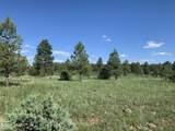 9367 Mountain Meadow Lane - Photo 1