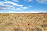 Sun Country #6 39.96 Acres - Photo 10