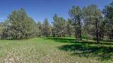 TRACT E-MM 414 Hwy 180 - Photo 10