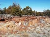 7833 Cedar Trail - Photo 10