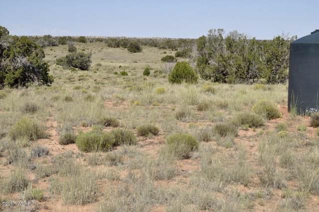 441 Woodridge Ranch, Concho, AZ 85924 (MLS #216741) :: Walters Realty Group