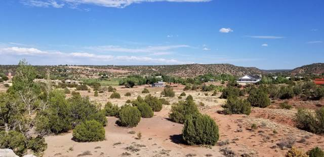 2647 State Road 77, Taylor, AZ 85939 (MLS #220560) :: Walters Realty Group