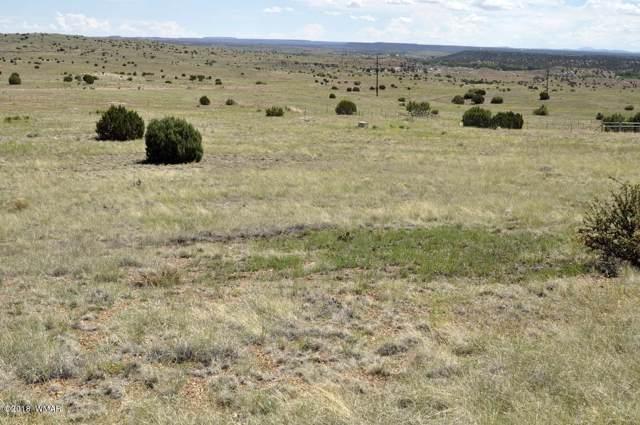 Lot 99 Taylor Farms #2, Taylor, AZ 85939 (MLS #221401) :: Walters Realty Group