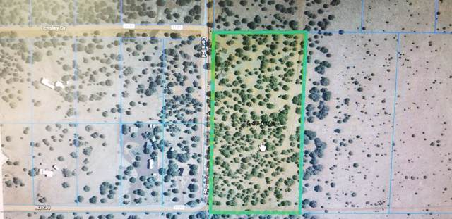 5 Acres In Vernon #36, Vernon, AZ 85940 (MLS #225540) :: Walters Realty Group