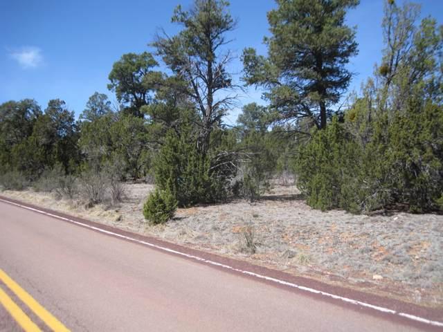 2901 Buckskin Road Road, Overgaard, AZ 85933 (MLS #226586) :: Walters Realty Group