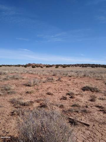 TBD Section 22, R22e:Tract 599, Snowflake, AZ 85937 (MLS #228827) :: Walters Realty Group