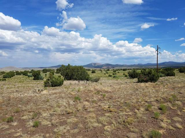 3149 N Apache County Road, Vernon, AZ 85940 (MLS #230729) :: Walters Realty Group