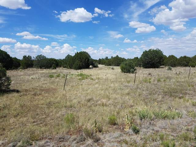 3398 Apache County Road, Vernon, AZ 85940 (MLS #230762) :: Walters Realty Group