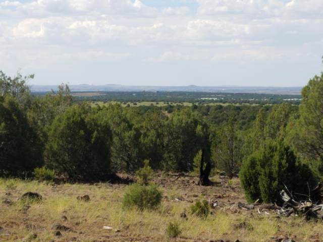 3138 Apache County Road, Vernon, AZ 85940 (MLS #230763) :: Walters Realty Group