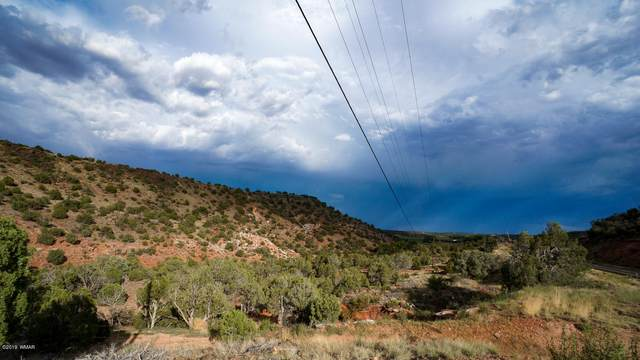 TBD Shumway Road, Shumway, AZ 85901 (MLS #230836) :: Walters Realty Group