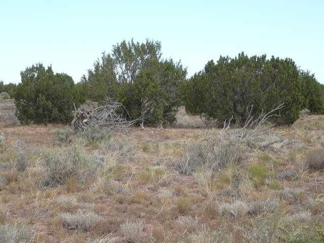 5611 Pasture Gap Road #1, Heber, AZ 85928 (MLS #231281) :: Walters Realty Group