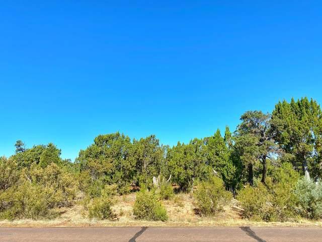 2976 W Lodgepole Lane, Overgaard, AZ 85933 (MLS #231286) :: Walters Realty Group