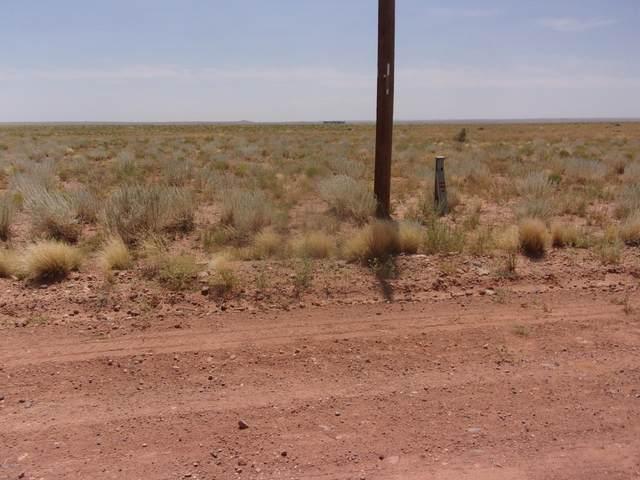 7610 Stampede Road #22, Holbrook, AZ 86025 (MLS #231350) :: Walters Realty Group