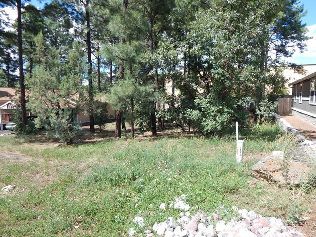 LOT 17 Comfy Court, Lakeside, AZ 85929 (MLS #231593) :: Walters Realty Group