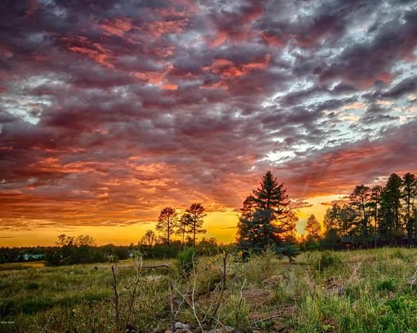 TBD Aspen Meadow, Pinetop, AZ 85935 (MLS #231681) :: Walters Realty Group
